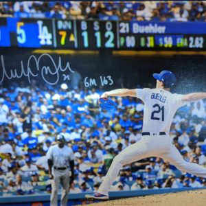 Buehler Game 163 Canvas