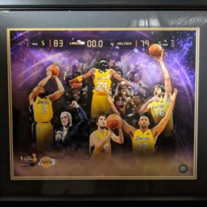 2010 Laker Collage